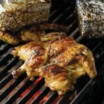 Stenad het kyckling