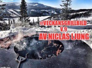 v09 Niclas Ljung